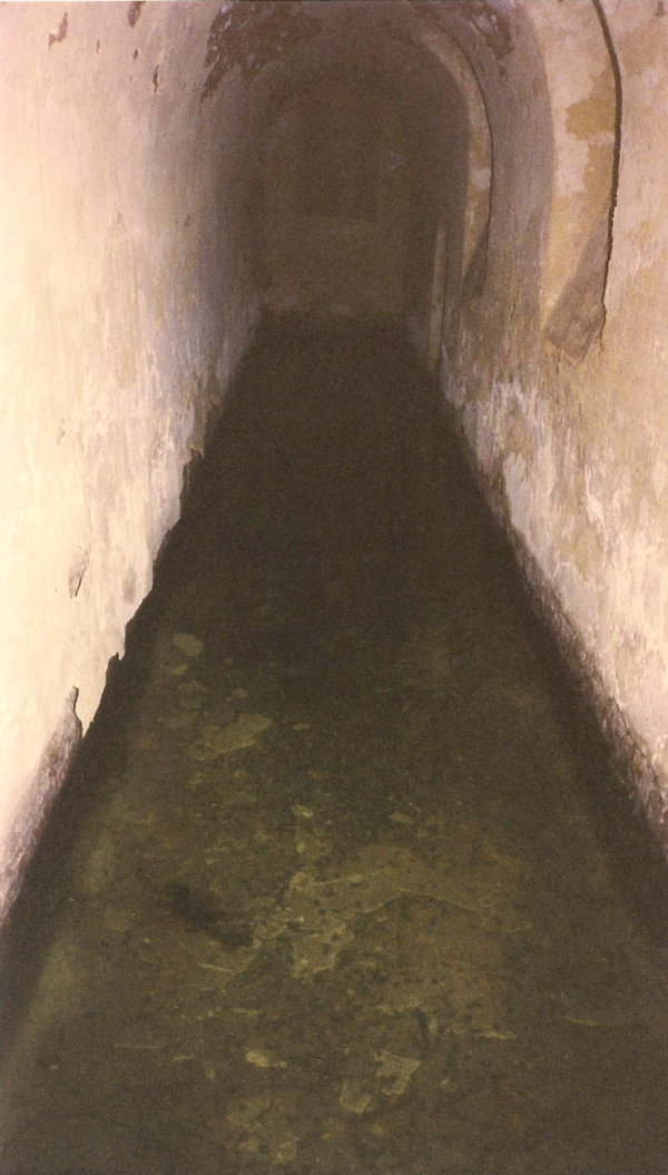 Flooded entryway to the crypt at St. Sergius' Church