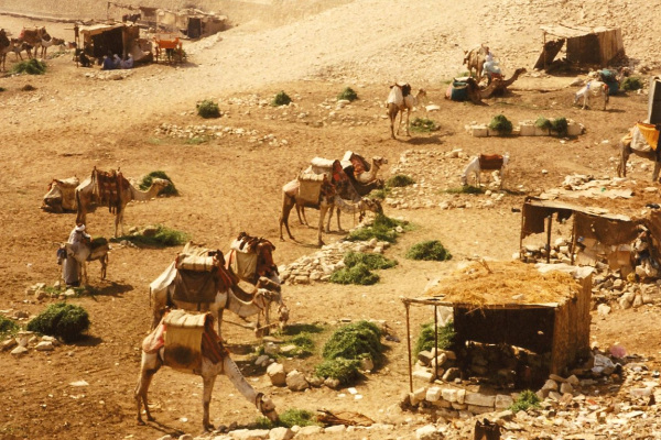 A camel corral at the base of the plateau