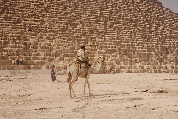 Guarding the Giza Pyramids