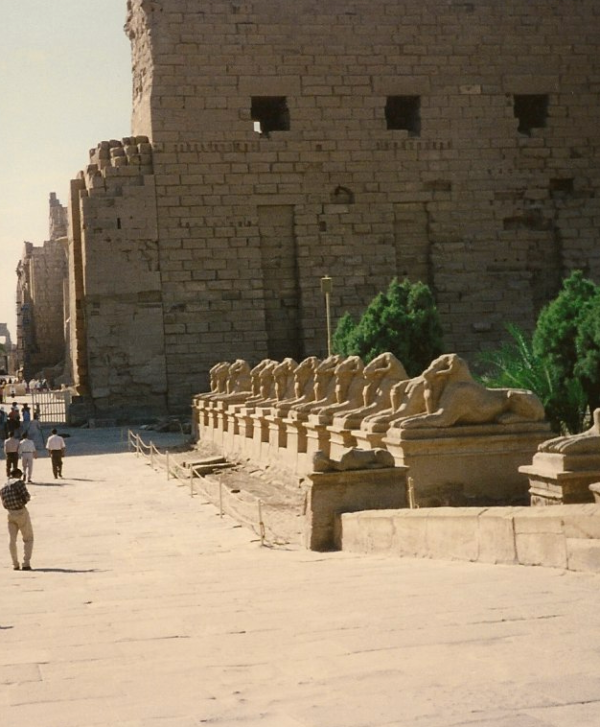 The Approach to the Great Temple of Amun located at Karnak, with its row of criosphinxes (Photo by Keith Payne)