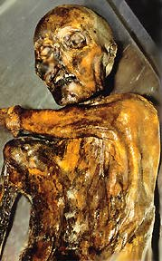 Ötzi the Iceman (Photo courtesy of Mesa Community College)