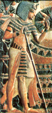 Tutankhamun leaning onto a walking stick