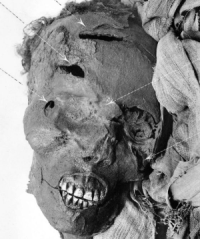 The battered head of Seqenenre Tao II