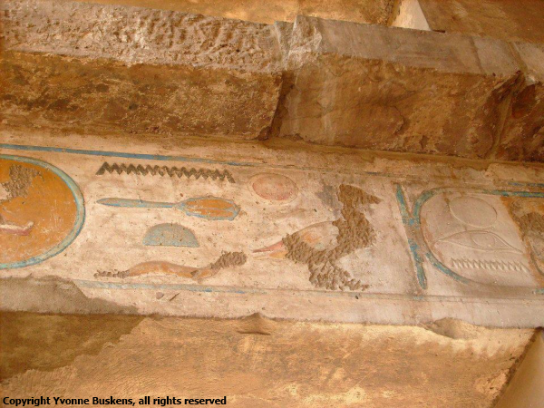 Detail from the Festival Hall of Thutmose III (Photo by Yvonne Buskens)