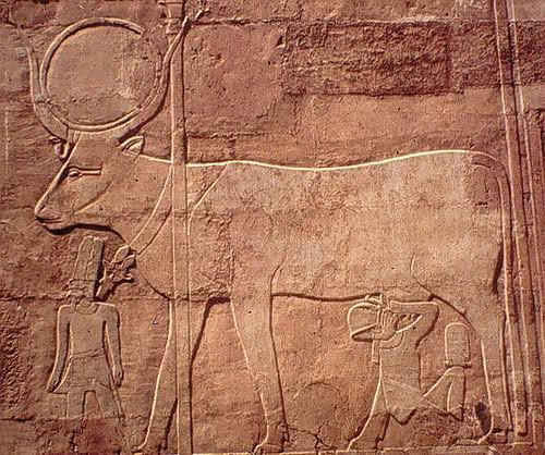 Relief from walls of Deir el Bahri showing the goddess Hathor in bovine form with Hatshepsut (Vicky Metafora, contrib.)