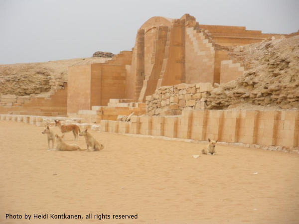 Dogs guarding the T-Temple at Djoser's complex (Photo by Heidi Kontkanen)
