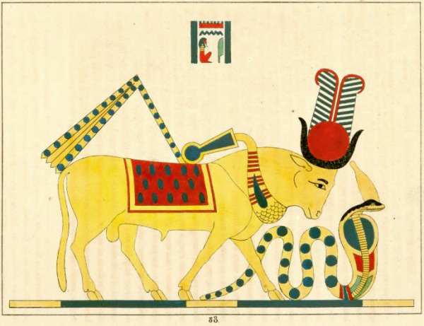 "The Mnevis bull, sacred to the sun cult, from ""Pantheon egyptien"" by Champollion (Public domain)"