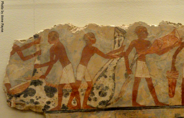 003 - Cattle sacrifice scene from the Eighteenth Dynasty tomb of Ounsou from the Louvre