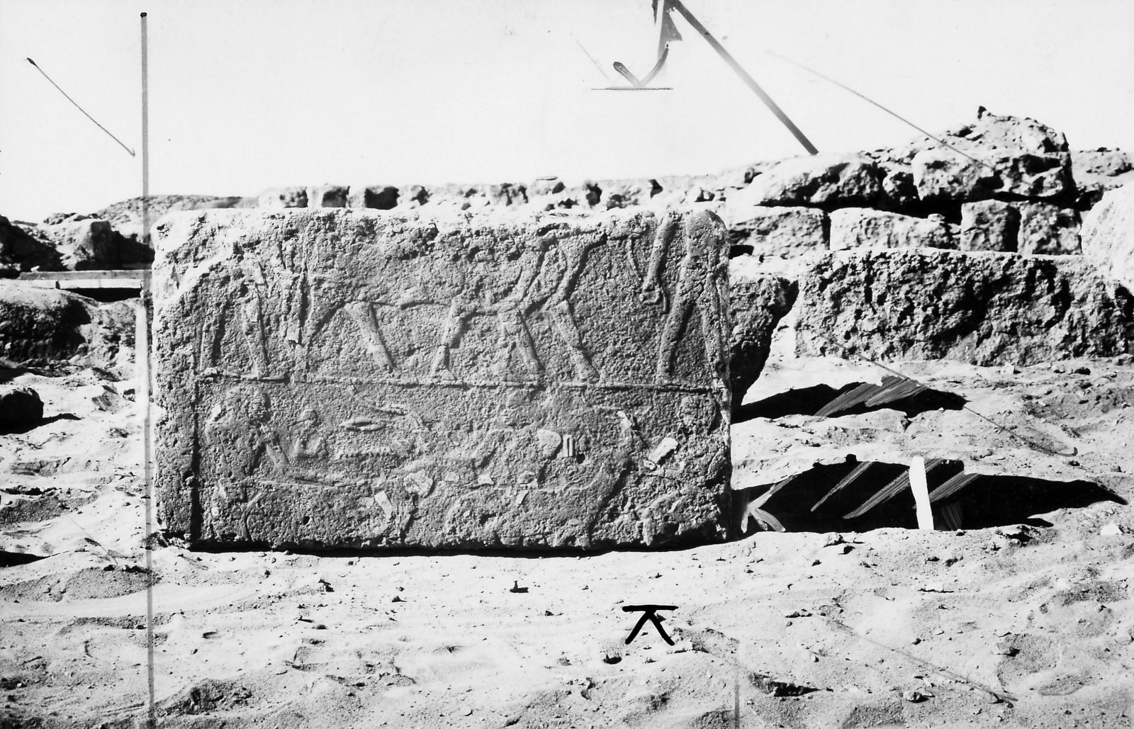 Block of relief from mastaba of Shetwi, chapel, eastern wall, showing livestock procession. Photo ID KHM_AEOS_II_2885, photo and description courtesy of the Giza Archives maintained by Harvard University and the Museum of Fine Arts Boston, online at Digital Giza.